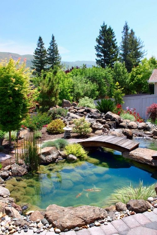 Beautiful Backyards With Pools 26