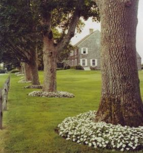 Flower Beds In Front Of House 95
