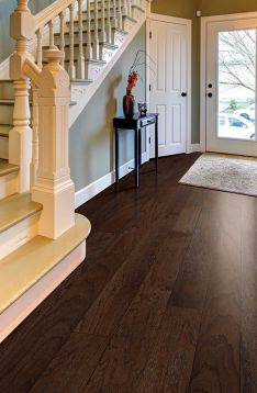Hardwood Floors Colors Oak 16