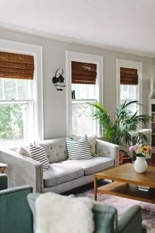 Living Room Pillows 155