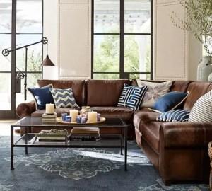 Living Room Pillows 42