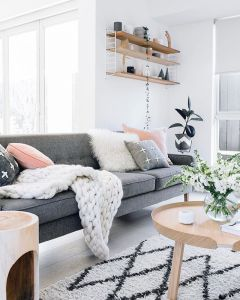 Living Room Pillows 64
