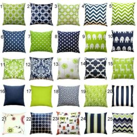 Living Room Pillows 99