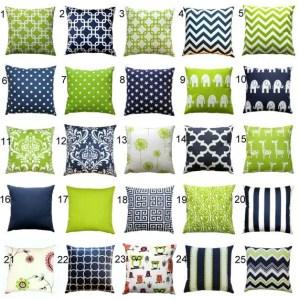 Living Room Pillows 99