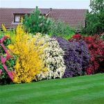 Privacy Fence Ideas 109