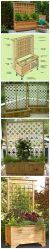 Privacy Fence Ideas 43