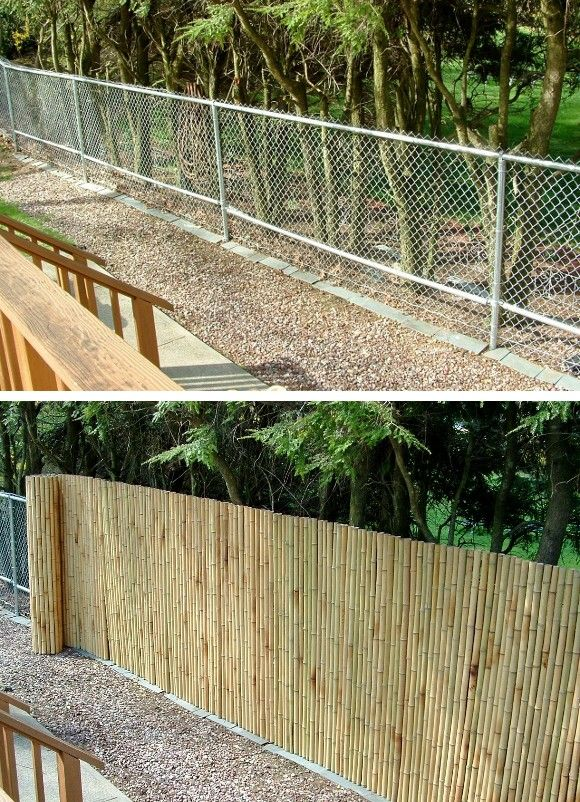 Privacy Fence Ideas 86