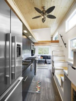 Tiny Luxury Homes 252
