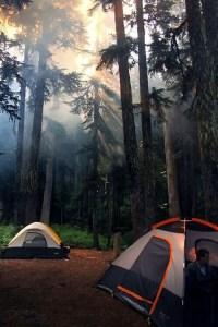 Air Streams Dream Campers 2