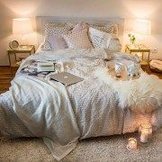 Elegant Cozy Bedroom 67