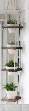 Indoor Plants 13