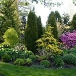 Small Backyard Ideas 2