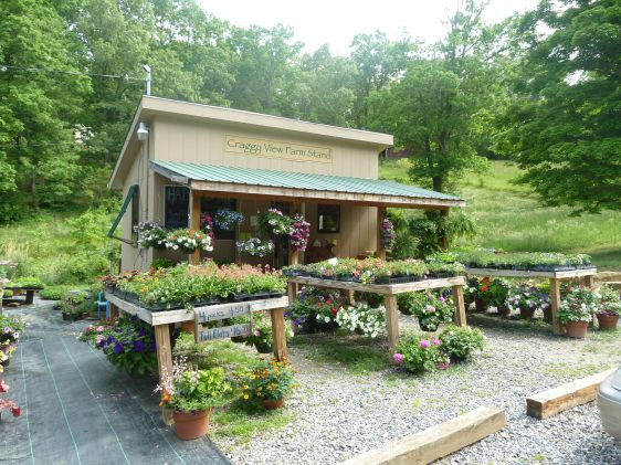Farm Stand Ideas 20