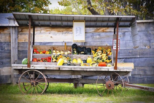Farm Stand Ideas 3