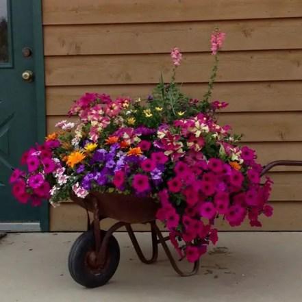 Flower Garden Ideas 13