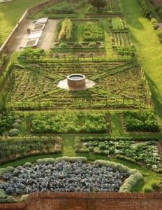 Potager Garden 14