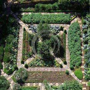 Potager Garden 18