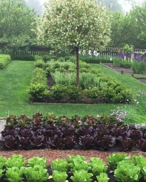 Potager Garden 24