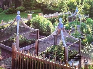 Potager Garden 6
