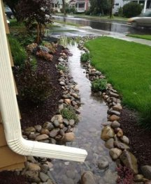 Front Yard Landscaping 1