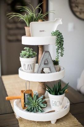 Succulents 9