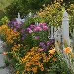 Cottage Garden Front Yard 15