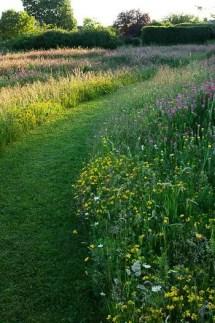 Wildflower Field 22