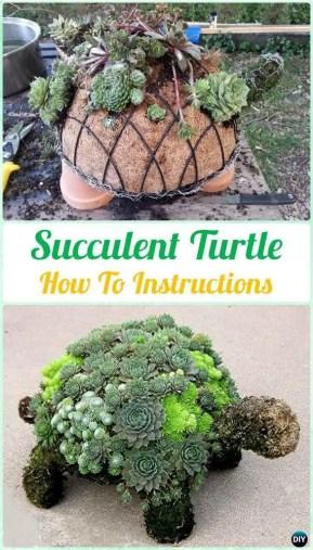 Succulent Design 10