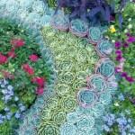 Succulent Design 28