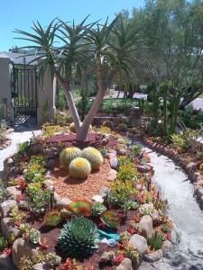 Succulent Design 45
