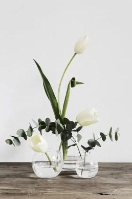 White Tulips 15