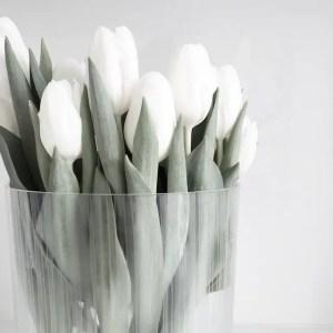 White Tulips 33