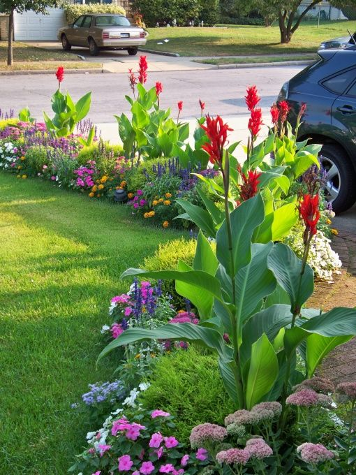 Tropical Landscaping Ideas 10