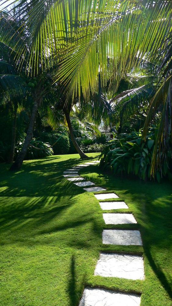 Tropical Landscaping Ideas 6