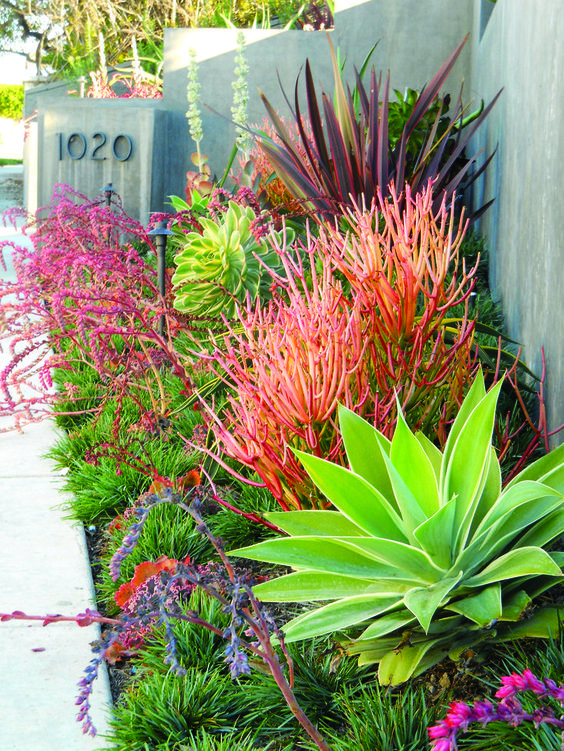 Tropical Landscaping Ideas 7