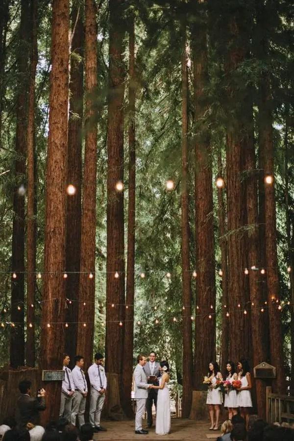 Forest Wedding Ideas 7 Result