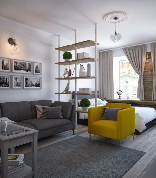 Small Apartment with Smart Devider