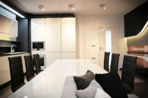 Futuristic Condo Apartment Interior Design Ideas (12) Result