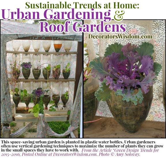 Sustainable Trends at Home: Urban Gardening, Roof Gardens and Window Gardens Are All Hot Trends for 2016