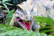 Animatronic Dinosaur 46