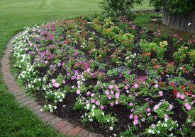 Beautiful Rose Garden Design Ideas