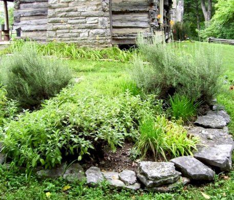 Design Herb Garden