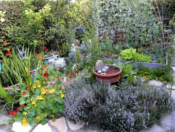Flower and Herb Garden Design