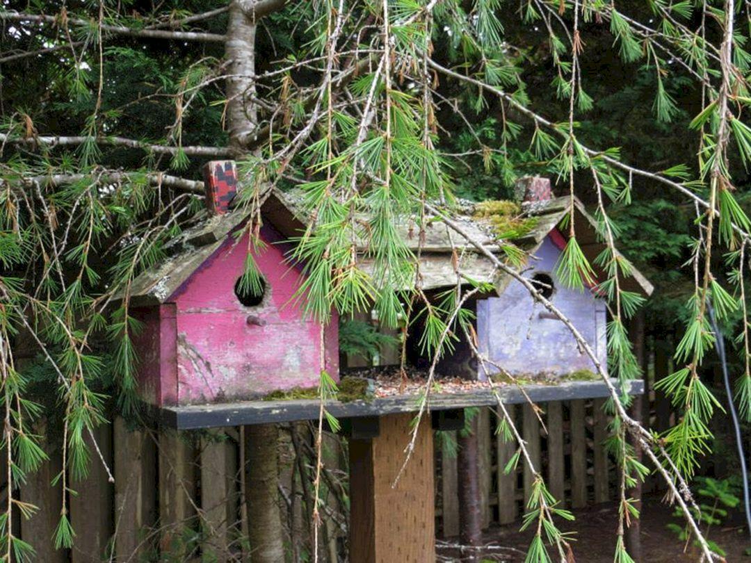 Birdhouses Rustic in Your Garden