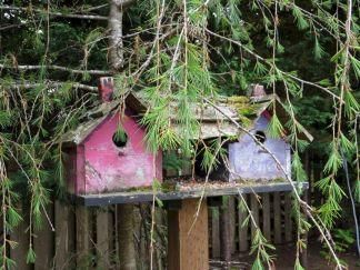 Most Popular Birdhouses Rustic in Your Garden 2