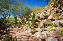 Phoenician Cactus Garden
