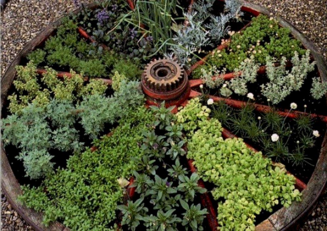 Wagon Wheel Herb Garden Design – DECOREDO on herb garden layout design, herb garden design plans, herb garden clip art, herb landscaping, herb garden planning, herb garden ideas, herb container gardens, herb knot garden design, herb garden design software,