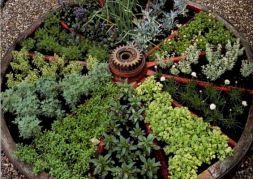 Wagon Wheel Herb Garden Design