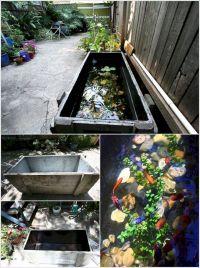 Aquarium Backyard Garden Ideas 8
