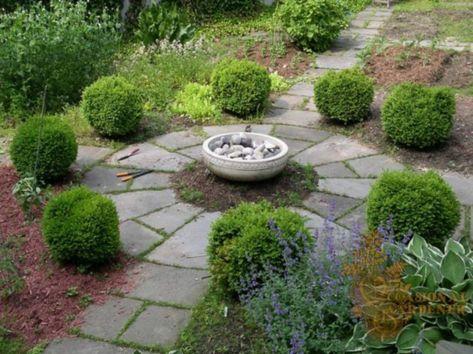Beautiful Backyard Vegetable Garden Design Ideas